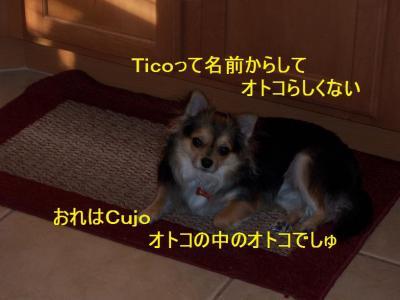 100_30766.jpg