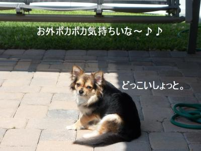 100_3457.jpg