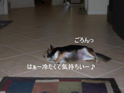 100_3467.jpg