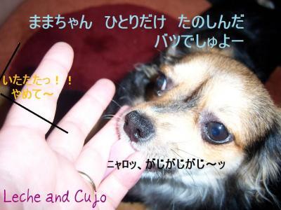101_1506.jpg