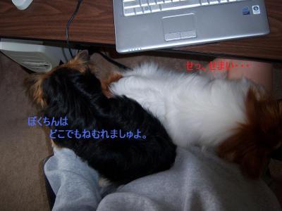 101_2272.jpg