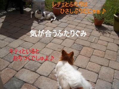 101_2301.jpg