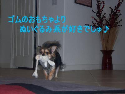 101_2636.jpg