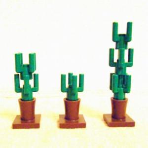 Cactus06.jpg