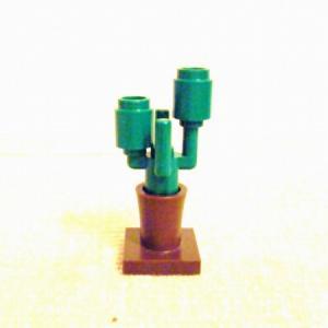 Cactus07.jpg