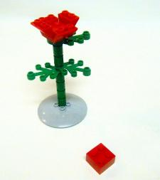 flower06.jpg