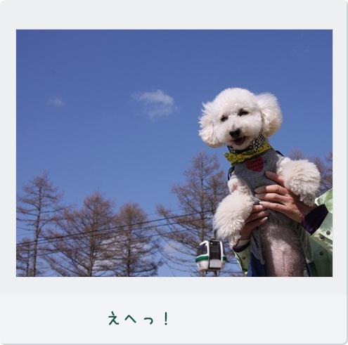 15_20110521002909.jpg