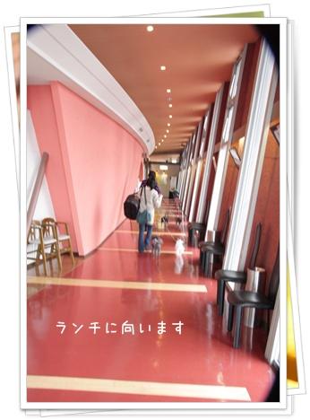37_20110224211913.jpg