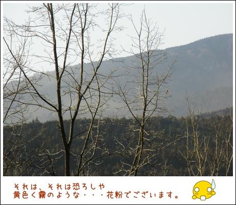 52_20110306212453.jpg