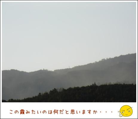 53_20110306212435.jpg