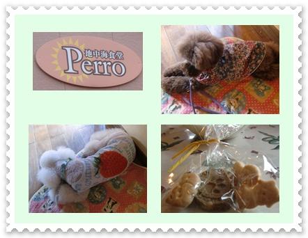 cats_20100823001251.jpg