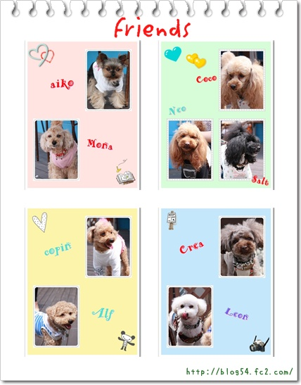 cats_20110510215209.jpg