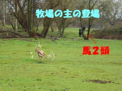 20060403095937.jpg