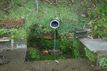 水汲み場2