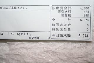 s-mg_2447.jpg