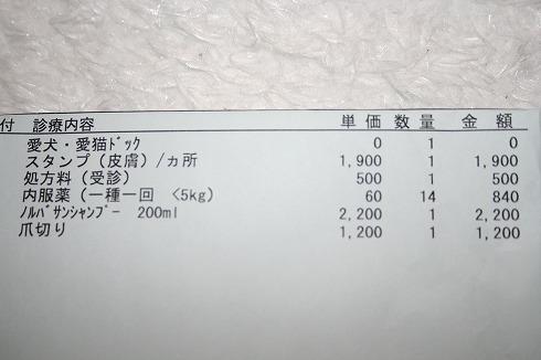 s-mg_2448.jpg