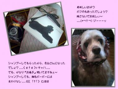 diary2-09.jpg