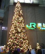 恵比寿駅のツリー