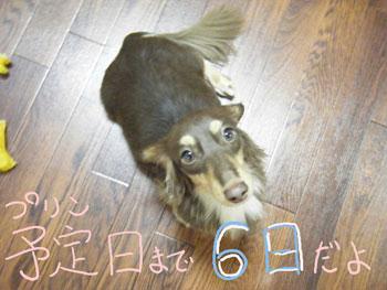 6.13ブログ3