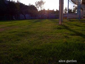 IMG_0031_convert_20111019214908.jpg
