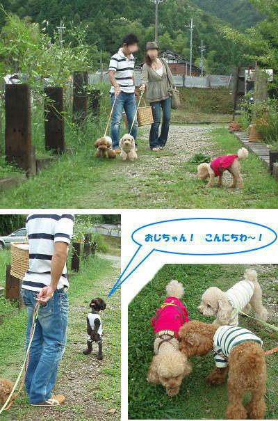 Jsヒル2