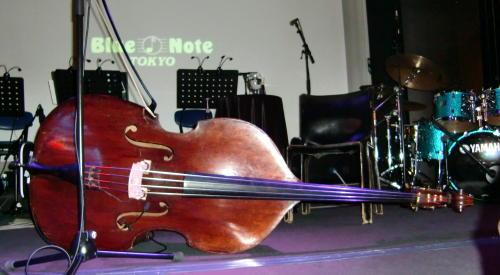 Esperanza Bass