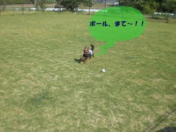 リズボール