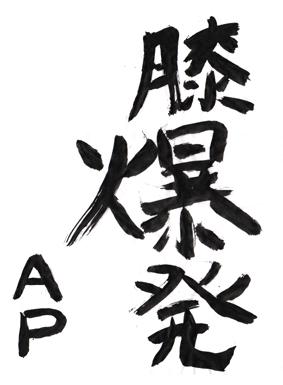 ap_001.jpg