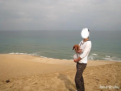 鳥取砂丘④