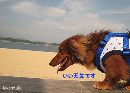 海の公園②