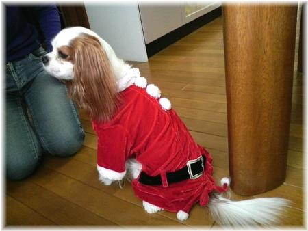 クリスマスあれん②