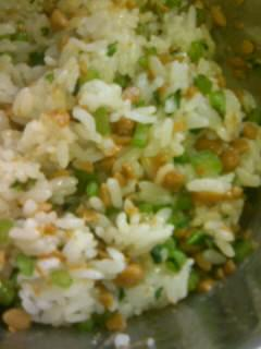 納豆飯10