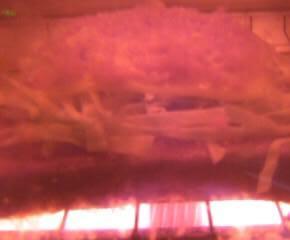 ピザトーストのシャンチョビ味11