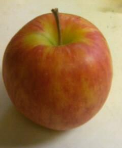 りんごのアイスクリーム7