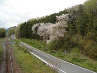 日本へそ公園_04_23 (48)