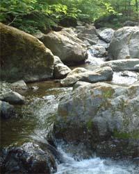20050521b.jpg