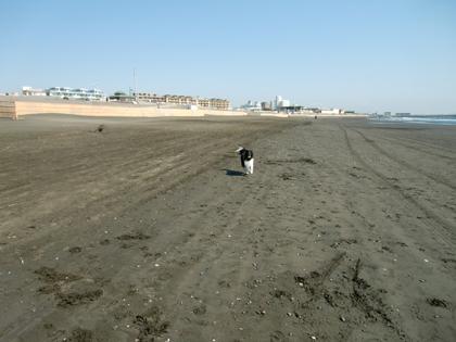 平日の海1