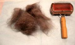 小麦の抜け毛