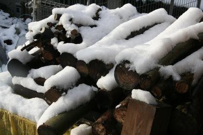 雪化粧した薪