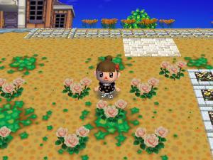 RUU_0037_convert_20090628151500.jpg