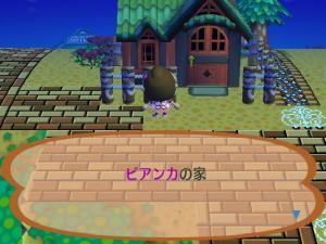 RUU_0117_convert_20090704162834.jpg