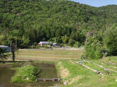 s田園風景
