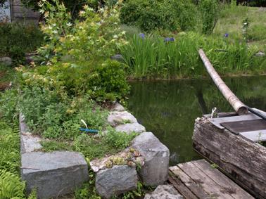 4池整備第一弾2