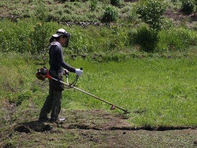 1ジュンちゃん草刈り