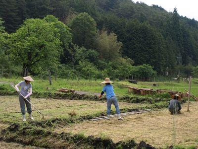 4刈った草を入れる
