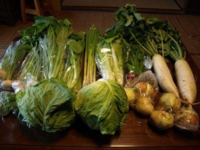 6有機野菜セット