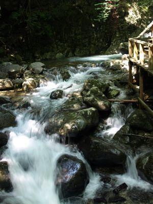 4いつもの滝1