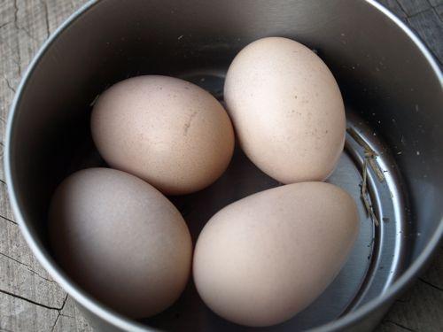 10烏骨鶏卵