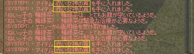 mabinogi_2010_02_01_003.jpg
