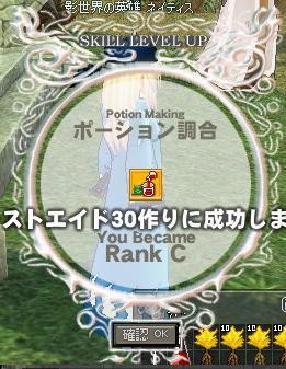 mabinogi_2010_02_28_002.jpg